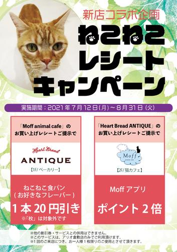 「Heart Bread ANTIQUE」「Moff animal cafe」コラボ企画 ねこねこレシートキャンペーン