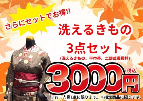 *洗える着物3点セット3000円(税込)セール*